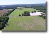 Florida Farm Land 206 Acres Hardee Farms in Chiefland, Florida