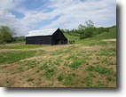 60 Acres In Metcalfe County, KY