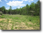 130 Acres In Hart County, KY