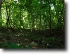 Tennessee Hunting Land 8 Acres 8ac Totally Wooded- Level To Gentle Roll