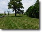 Tennessee Land 6 Acres 5.93 Ac w/2 Ac Clear Close To Dale Hollow