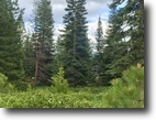 Desirable Homesite at Bailey Creek
