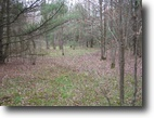 28 acres Danby NY borders State Forest