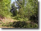 Michigan Hunting Land 160 Acres TBD South off Nestoria Road MLS #1053271