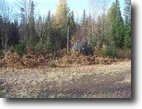 Michigan Hunting Land 80 Acres TBD Off Wolf Lake Road  MLS #1045655