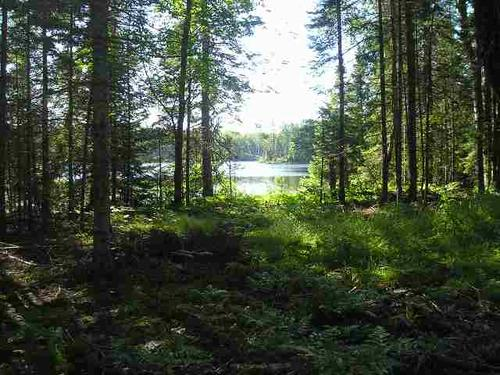 lot fence lake rd mls property michigamme michigan