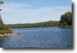 Michigan Waterfront 50 Acres Lot 44B E. Fence Lake Dr. MLS #1093428