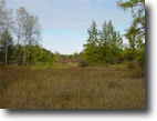 Michigan Hunting Land 36 Acres 566 North M-28  mls #1049291