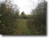 Michigan Hunting Land 160 Acres TBD Dunham Road  MLS #1049987