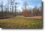 Lot 19, The Woods at Duck Harbor, 5 acres