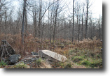 Lot 55,The Woods at Duck Harbor,5.49 acres