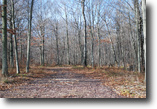 Pennsylvania Land 5 Acres Lot 82, The Woods at Duck Harbor, 5 arces