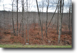 Lot 66, The Woods at Duck Harbor, 6.1 acre