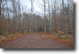 Lot 81, The Woods at Duck Harbor, 5 acres