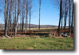 Lot 2, Paddocks at Duck Harbor, 3.1 acres