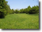 60 Acres in Starkville, MS