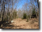 Adirondack Park Private Forest 183 acres !