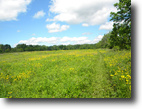 25 Acres Tillable Farmland Finger Lakes