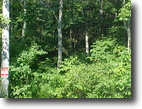 49+/- wooded acres in Elliott County, Ky!