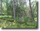 Wisconsin Hunting Land 2 Acres Heavily Wooded Lot in Chicog Township