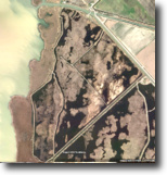 Ontario Hunting Land 530 Acres Historic Marsh Lake Lake St.Clair SOLD