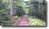 New York Hunting Land 35 Acres New York Land near Adirondacks Private!