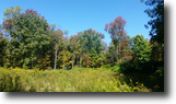 New York Hunting Land 97 Acres New York Woodlands bordering State Forest