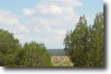 5 Acre Land White Mountains St Johns AZ