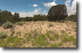 40 Acre Land St. John's, Apache County, AZ