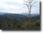 Tennessee Hunting Land 540 Acres Amazing Tellico Lake Views