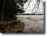 Michigan Waterfront 26 Acres Lot 9 Little Africa Lake Rd, Mls# 1110671