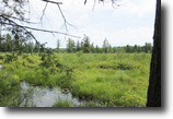 New York Hunting Land 16 Acres Waterfront Land Amboy NY MOTIVATED SELLERS