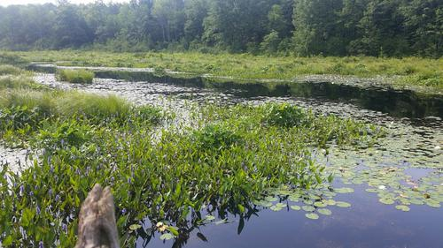 new cabin on little salmon river amboy ny property