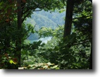 Tennessee Land 1 Acres 1.27 Ac Lake View on Sunset Pointe