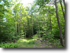 226 Acres Hunting Club Land