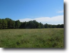 31.84 Acres on Land on Bill White Lane