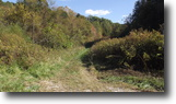 Kentucky Hunting Land 150 Acres HUNTERS-PRIVATE/SECLUDED 150+/-ac $199,900
