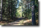 Michigan Hunting Land 480 Acres TBD Off Baraga Plains Rd., MLS# 1119533