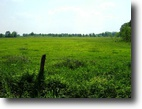 80 Acres For Sale in Clay County
