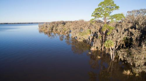 lake wimico recreation conservation property port saint joe florida