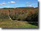 New York Hunting Land 42 Acres Land near Hornell NY Stream Private 41 Ac
