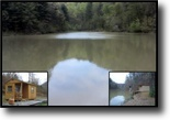 182.30 Acres Cabin & Building