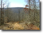 Tennessee Hunting Land 1 Acres Seculded, Timber Value, Homesite