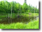 Michigan Hunting Land 320 Acres Tbd N Firesteel Rd, Mls# 1092802