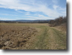 New York Farm Land 177 Acres Tillable Farmland near Canandaigua NY