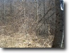 Kentucky Hunting Land 375 Acres Just ListedHUNTRS-375ac Eliott KY$349,900