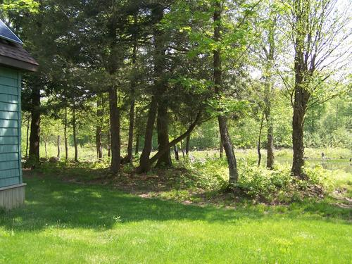 Land & Home For Sale! 49 Acres Near Worth, NY (Property ...