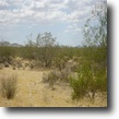 Lowest Priced 1.25 Acre in AZ = $24 Month!