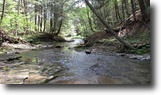 New York Hunting Land 10 Acres Land in Taylor NY with Stream and Views