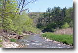 New York Hunting Land 50 Acres Timberland in Ossian NY Canaseraga Creek
